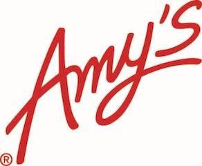 Amys_Logo PMS 495_8-13-14